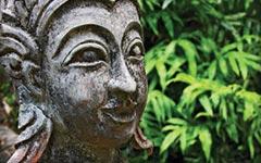 «Волшебный сад»