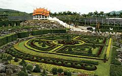 Тропический сад Нонг Нуч и Шоу слонов (включен обед)