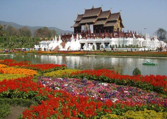 Чианг-Май: Фестиваль цветов