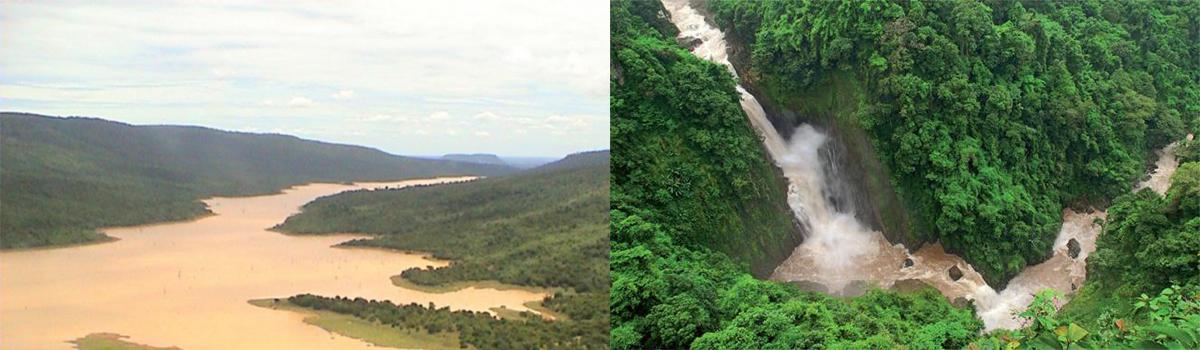 «Коридор дикой природы» будет построен в Таиланде к 2017 году