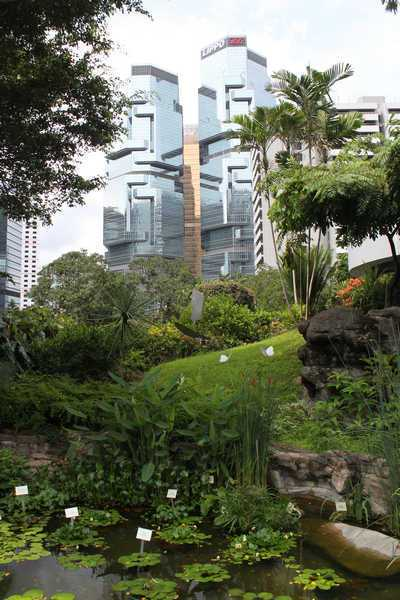 Что посмотреть в Гонконге или 10 Must See
