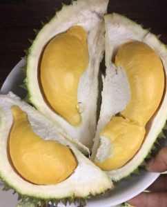 Король фруктов и афродизиаков